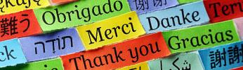 多言語対応多数実績あり。デザイン制作致します。